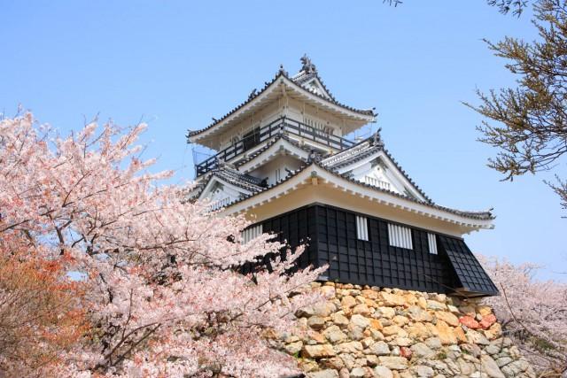 浜松城が出世城になるまで【浜松の歴史をしらべてみた】