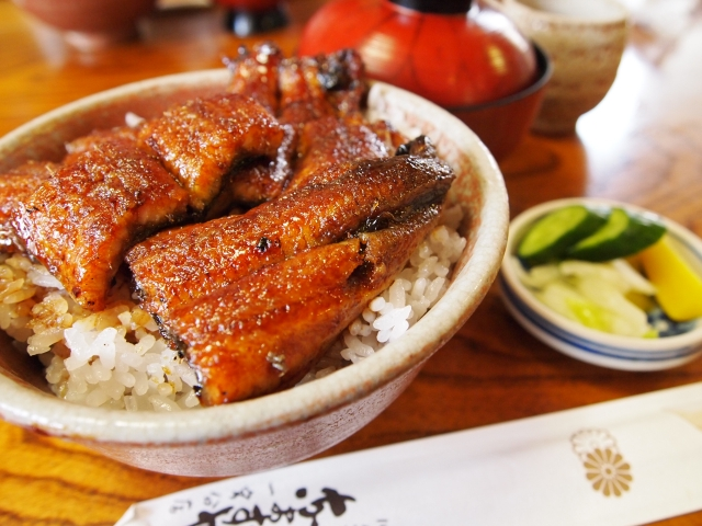 浜松駅周辺で浜松(浜名湖)うなぎを食べる
