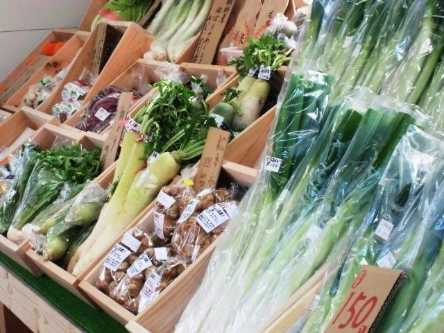 食欲の秋!浜松の野菜&果物をたっぷり召し上がれ