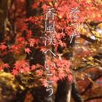 香嵐渓の紅葉を10倍楽しむために