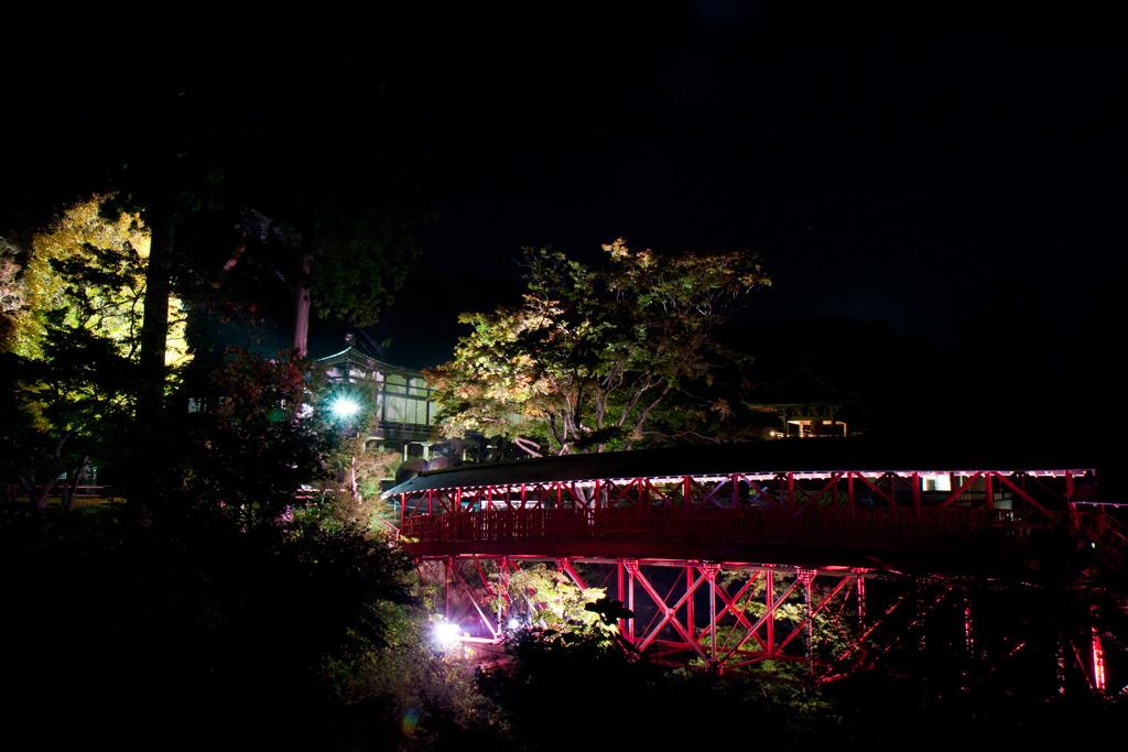 奥山半僧坊方広寺のライトアップ紅葉