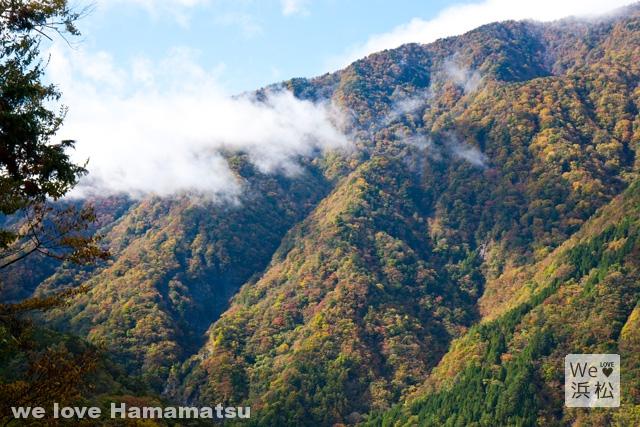 【絶景】山一面が紅葉!燃え上がる兵越峠