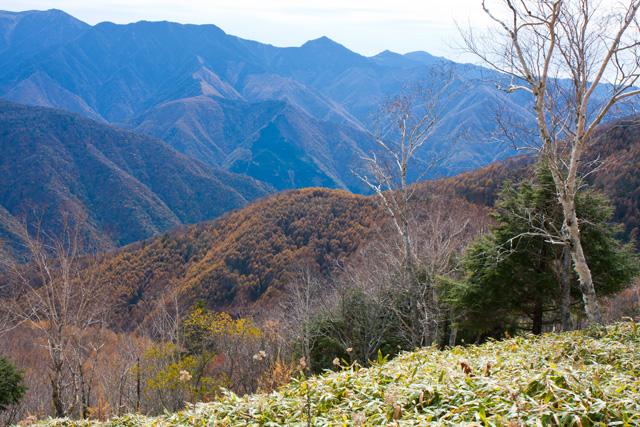 しらびそ高原からの景色