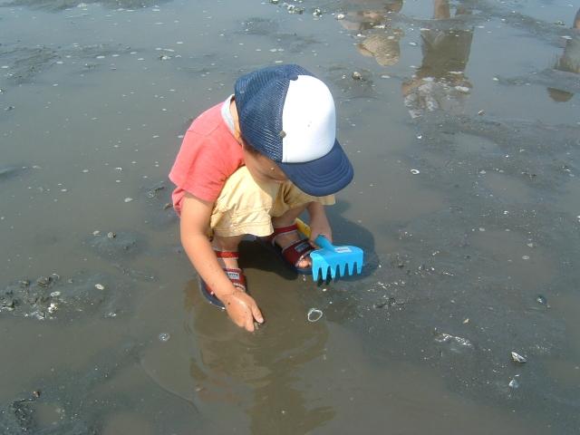 浜名湖で潮干狩り&レジャー!今年こそは潮干狩りできるの?2017年版