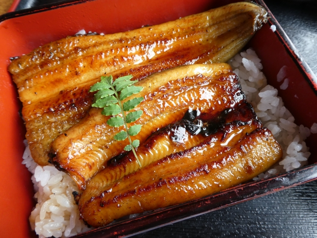 土用の丑の日といえばやっぱり鰻!浜松市内の持ち帰りうなぎ店12選