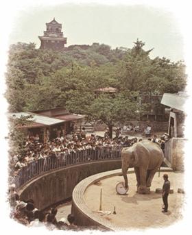 浜松城公園にあった浜松動物園