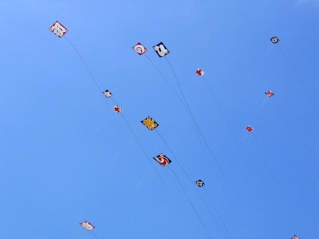 浜松まつり 凧揚げ
