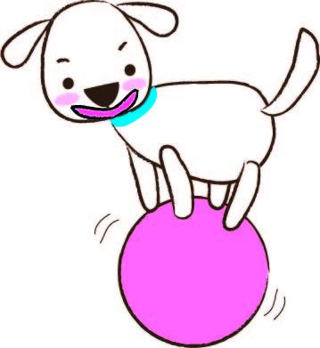 サーカス 犬