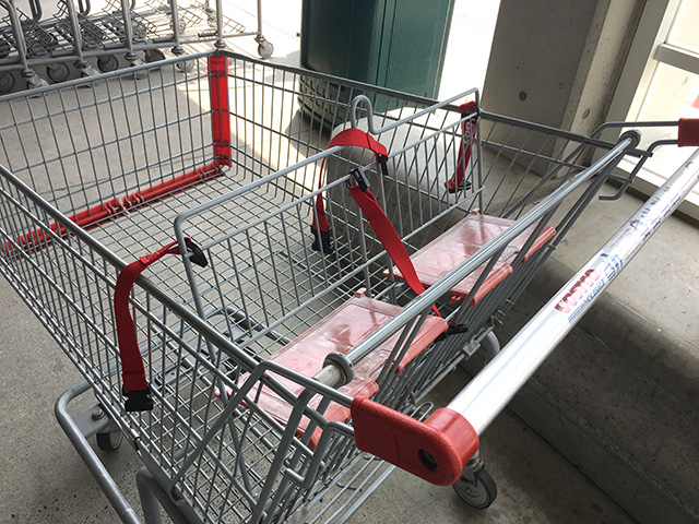 コストコ ショッピングカート
