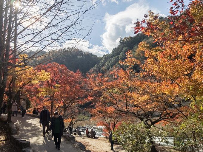香嵐渓川沿いの道の紅葉