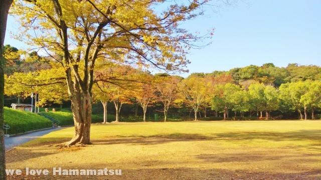 浜松城公園芝生広場