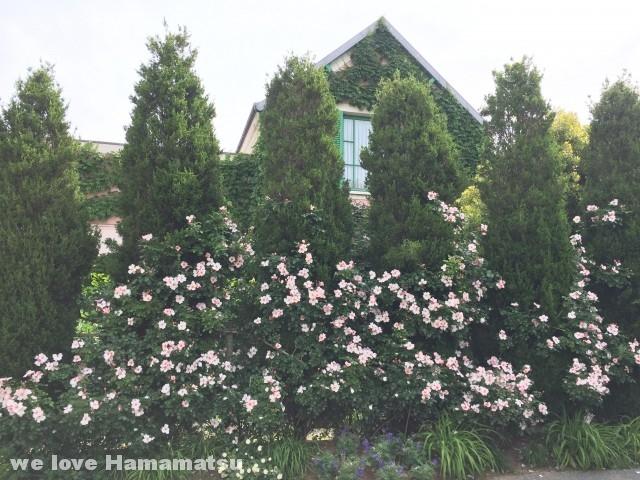 浜名湖ガーデンパーク 花の美術館
