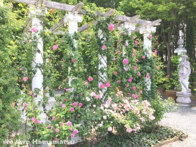 浜名湖ガーデンパーク バラ