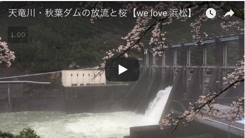 htube:welove浜松:千本桜と秋葉ダム