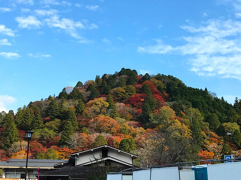 香嵐渓、飯盛山の紅葉の様子
