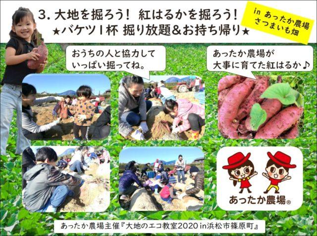 大地のエコ教室2020 in浜松市篠原町