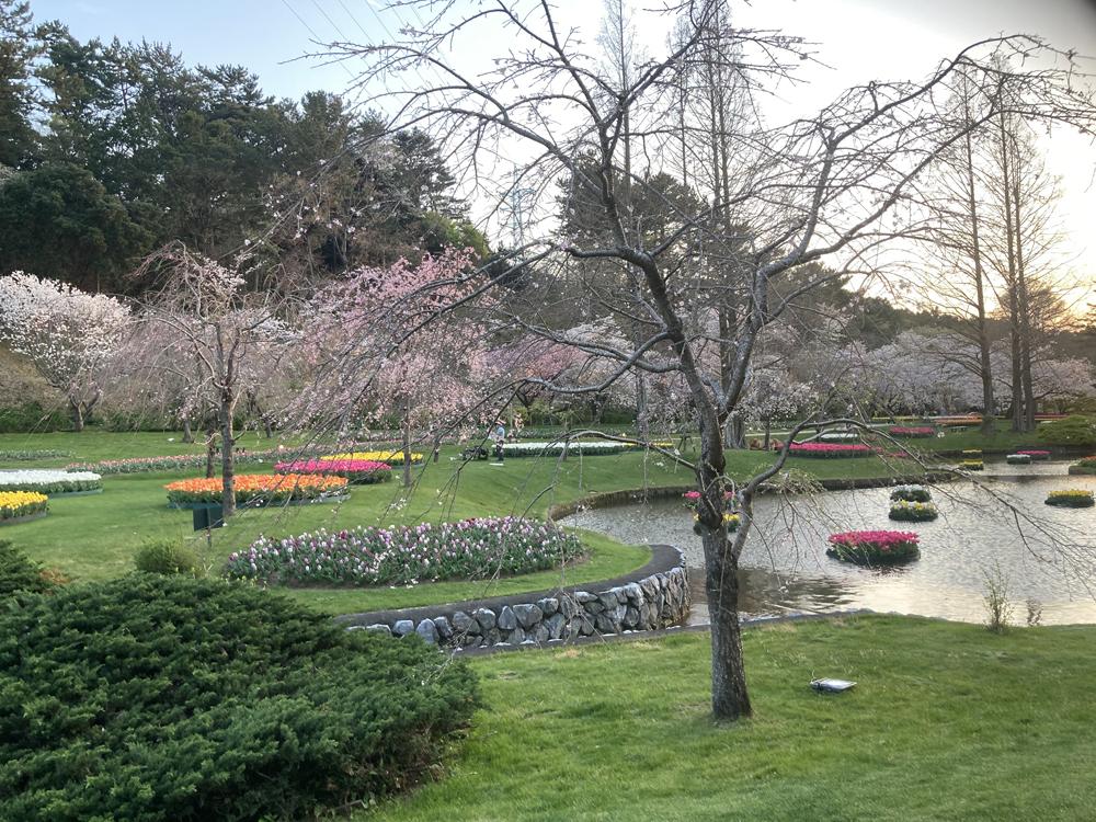 はままつフラワーパーク:東屋からの景色